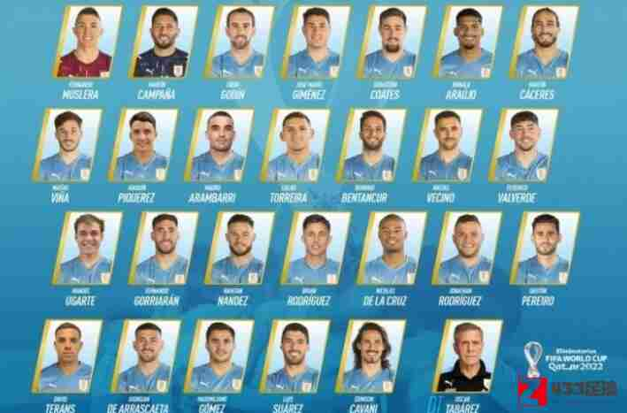 乌拉圭足球队,乌拉圭足球队新一期大名单:阿兰巴里,皮克雷在列